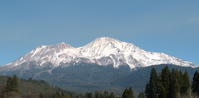 Misty Mount Shasta